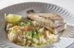 rodovalho grelhado com arroz de legumes.jpg