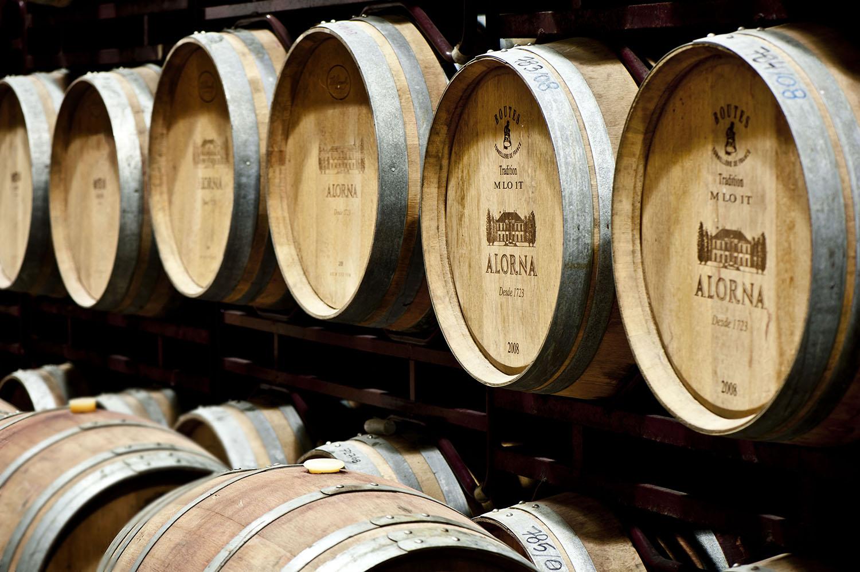 Jantar vínico Quinta da Alorna, em Alcochete, na In-Fusão de Sabores