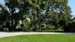 pestana-palace-lisboa-overview jardins