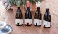 Vinhos Aldeia de Cima