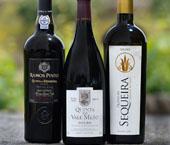 Concurso de Vinhos do Douro Superior
