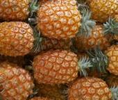 Ananás dos Açores DOP