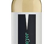Novo vinho da Adega Mayor