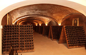 Gancia Cellars 350