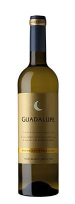 Guadalupe branco jpeg alta resolução g