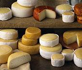 Melhores queijos Portugueses
