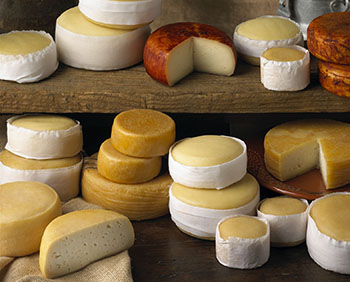 queijos 350