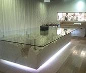 Restaurante Narcissus Fernandesii