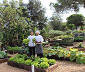 Conrad Algarve inaugura Kitchen Garden