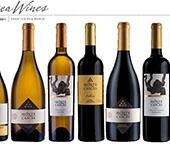 Monte Cascas em prova na Wine o'Clock
