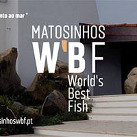 Matosinhos World´s Best Fish