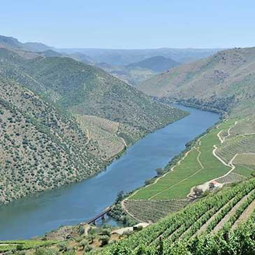 5.º Festival do Vinho do Douro Superior