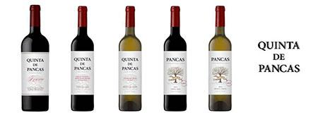 Quinta de Pancas 450