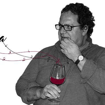 O vinho sem segredos