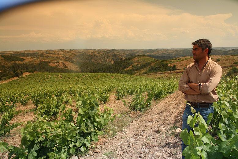 Vinhos Mont'Alegre em prova no Porto