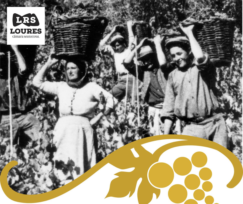 Festa do Vinho e das Vindimas em Bucelas