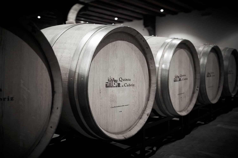 'Cabriz Colheita Seleccionada tinto 2014' é um dos 100 melhores vinhos do mundo