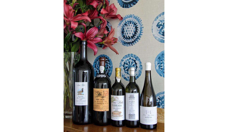Vinhos da Bairrada eleitos como os 'Melhores de Portugal' nos EUA