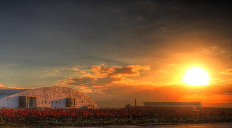 Melhor vinho tinto de lote do mundo é Alentejano