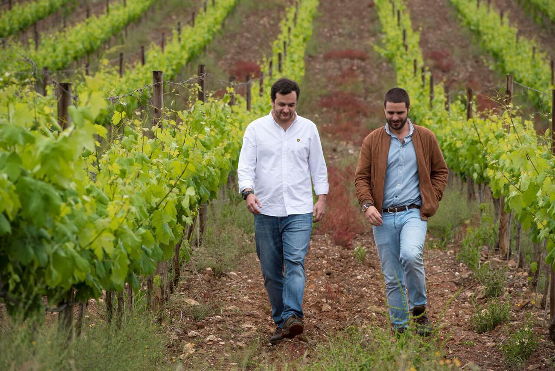 Discórdia é novo projeto vínico da Herdade Vale de Évora