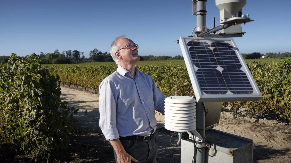Sogrape aposta em agricultura climaticamente inteligente