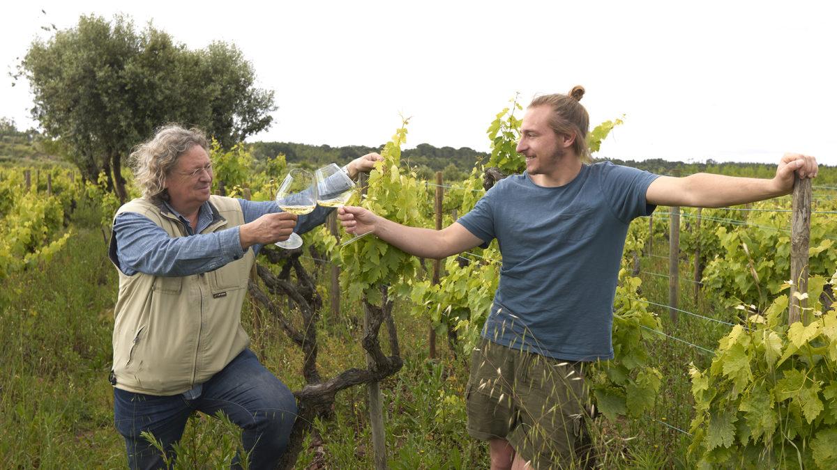 Niepoort lança a primeira família de Single Vineyards